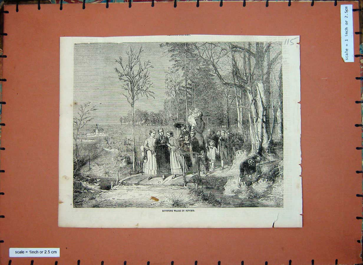 Print Families Morning Walk Spring Trees Country C1850 115E180 Old Original