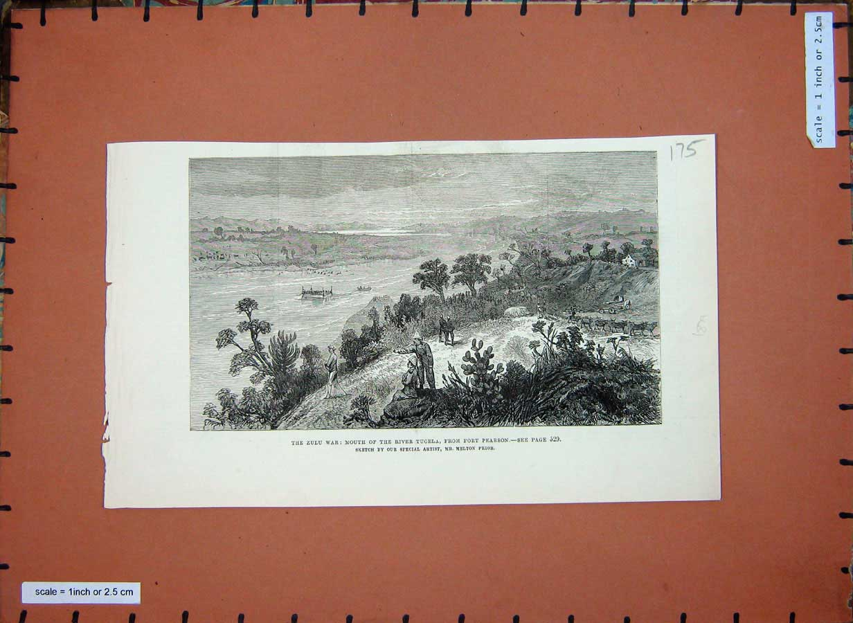 Print 1879 Zulu War River Tugela Fort Pearson Soldiers Trees 175E182 Old Original
