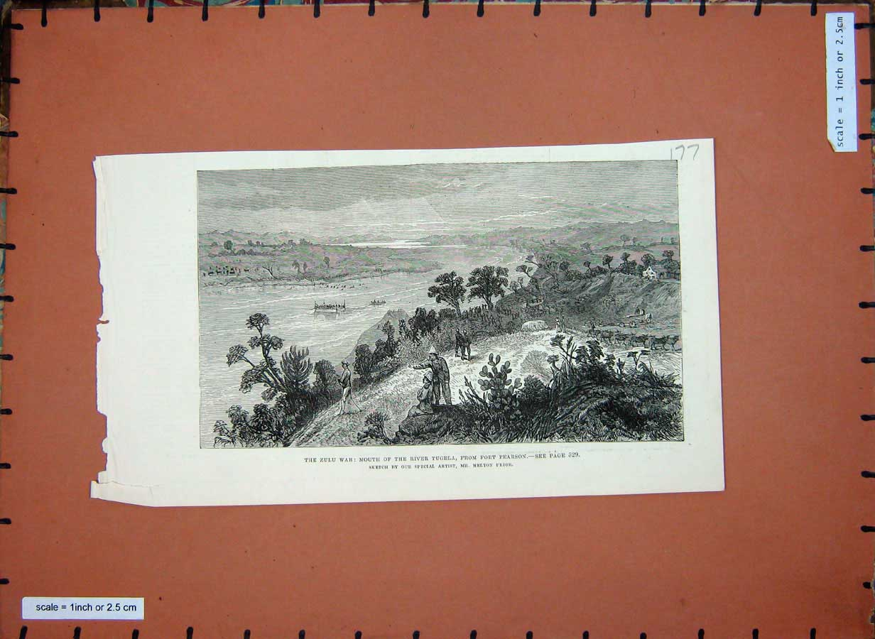 [Print C1880 Zulu War River Tugela Fort Pearson Soldiers Trees 177E182 Old Original]