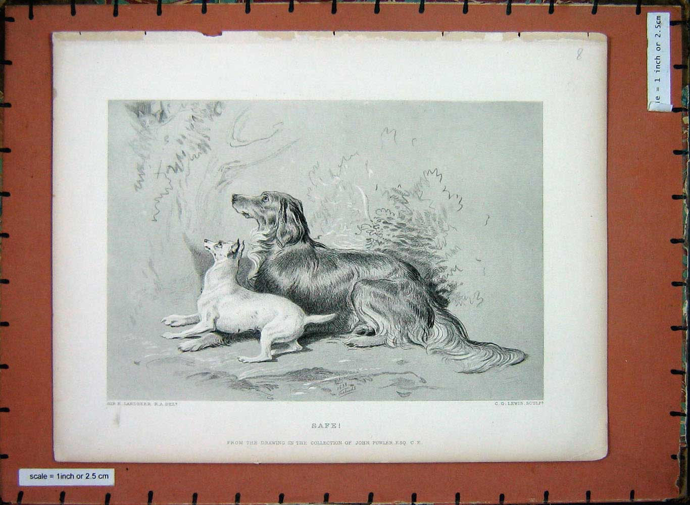 [Print Sir Landseer Puppy Dogs Lewis Fowler 205E198 Old Original]