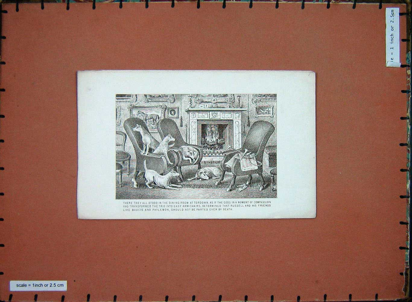 [Print Animals Puppy Dogs Dining Room House Chairs Tordown 165E199 Old Original]