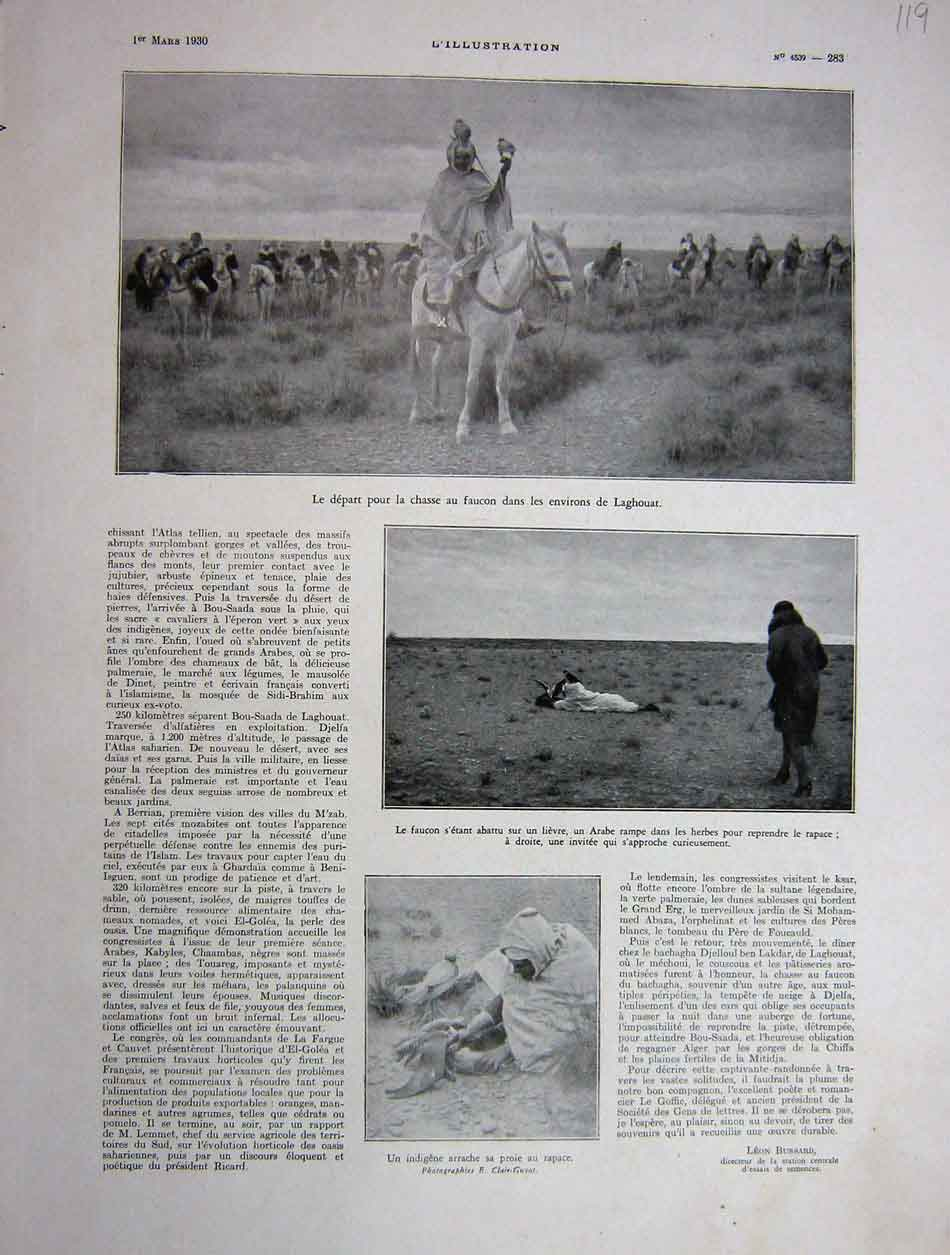 [Print 1930 French Falconry At Laghouat 119E201 Old Original]