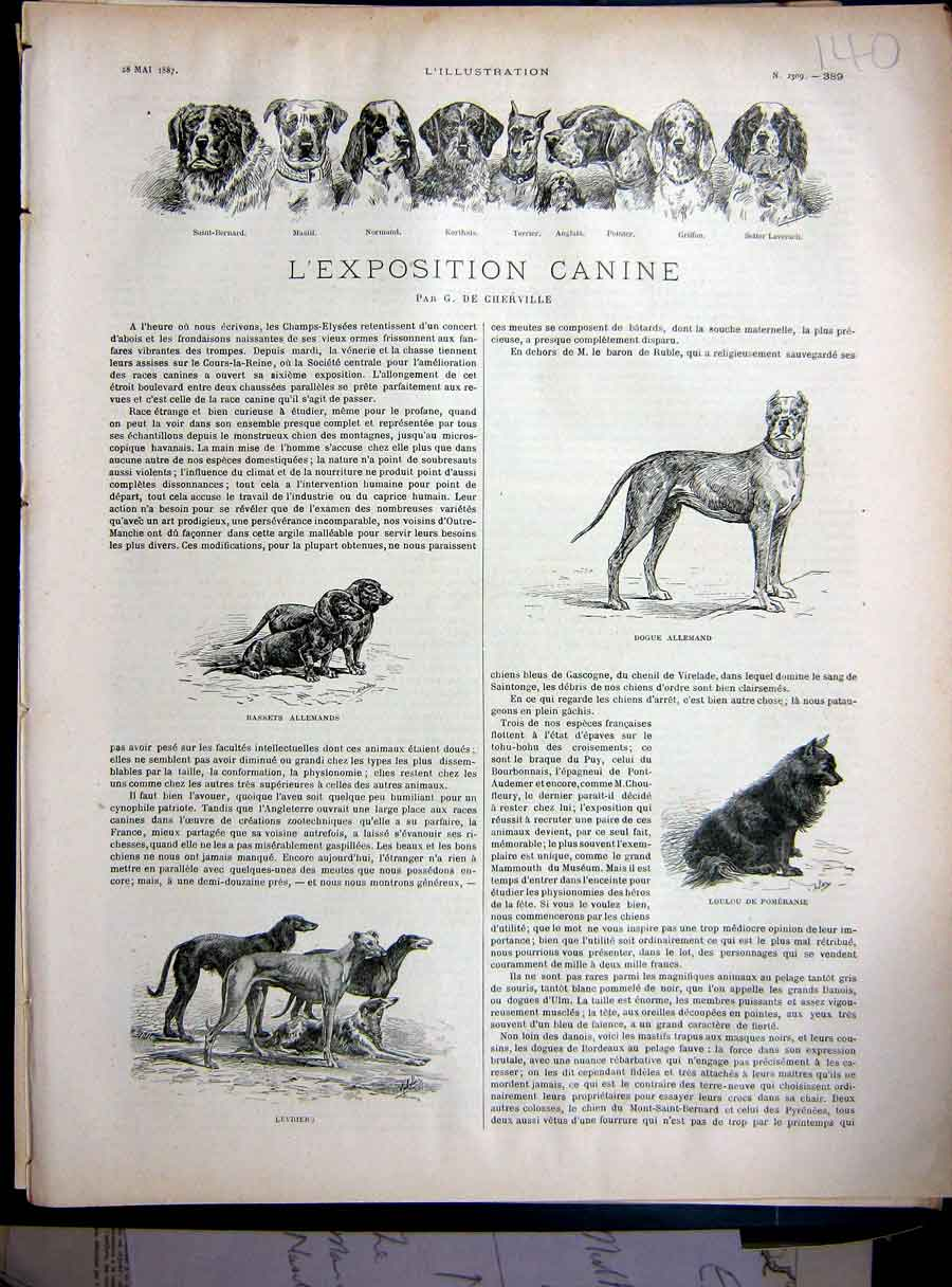 [Print Exhibition Dog Dogs Canine Paris France French 1881 140E250 Old Original]