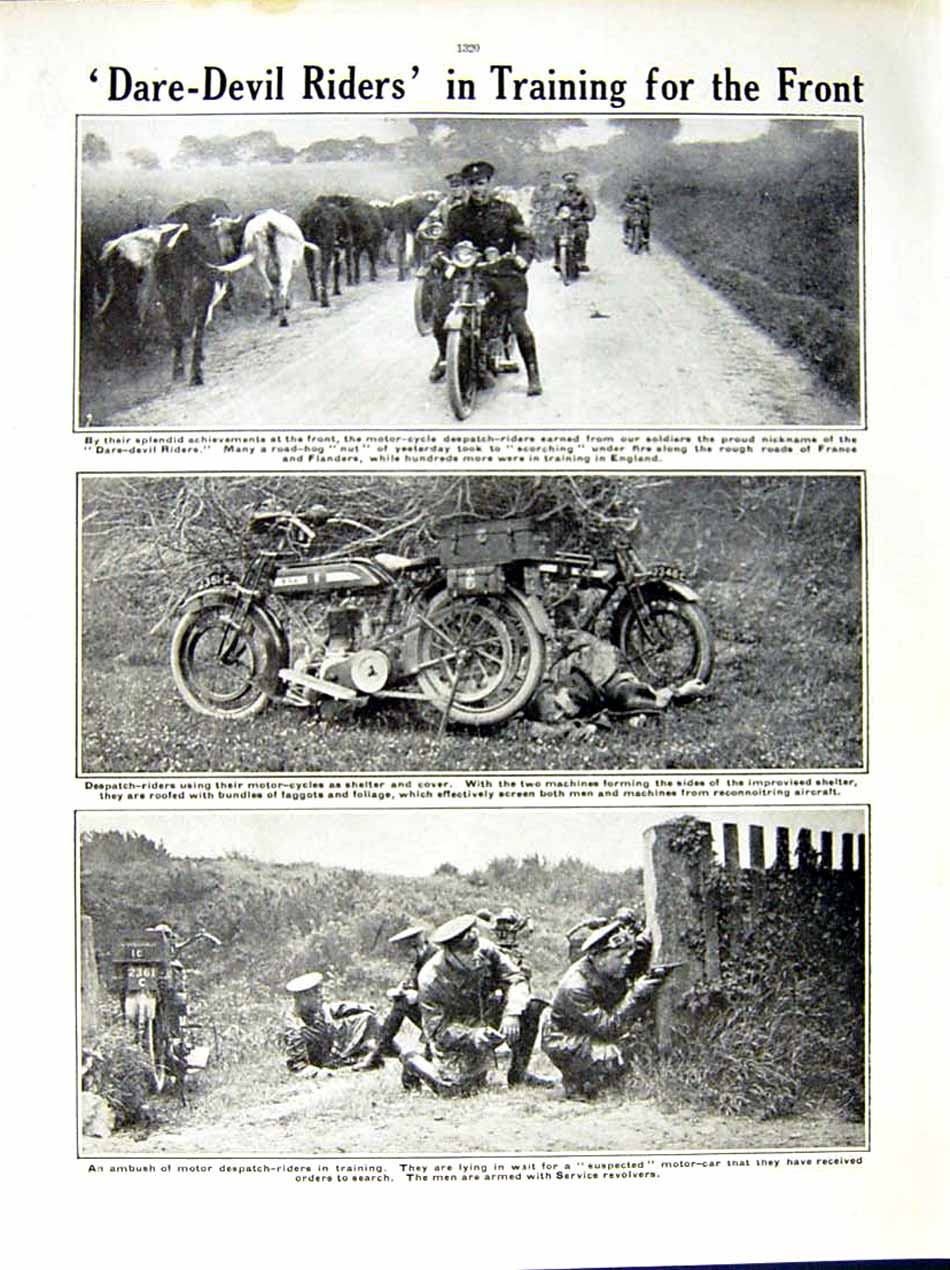 [Print 1915 World War British Soldiers Despatch Riders Horse 142Re286 Old Original]