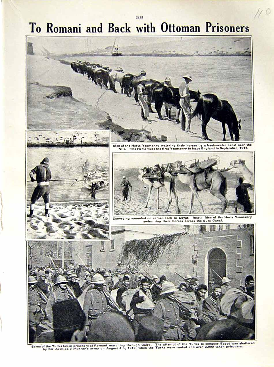 [Print 1916 World War Herts Yeomanry Horses Turks Cairo Egypt 110E287 Old Original]