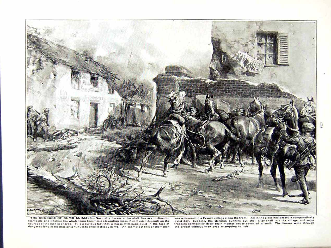 [Print 1916 World War British Soldiers Somme Horses Battle 235Re287 Old Original]