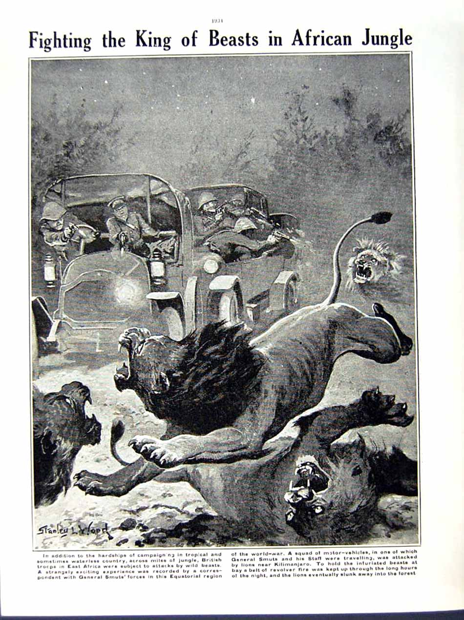[Print 1916 World War British Artillery Africa Jungle Lion 167Re291 Old Original]