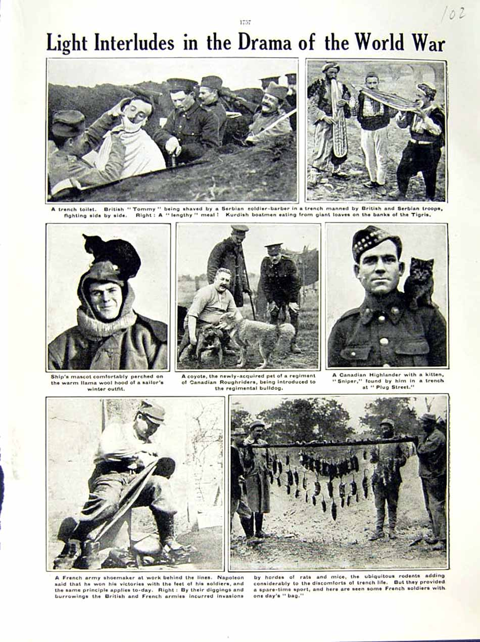 [Print 1915-16 World War British Tommy French Shoemaker Army 102E293 Old Original]