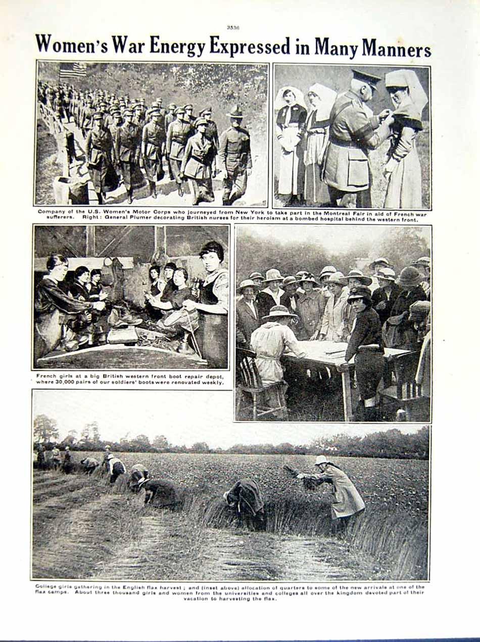 [Print 1919 World War Women Workers Railroad Flax Harvest 151Re295 Old Original]