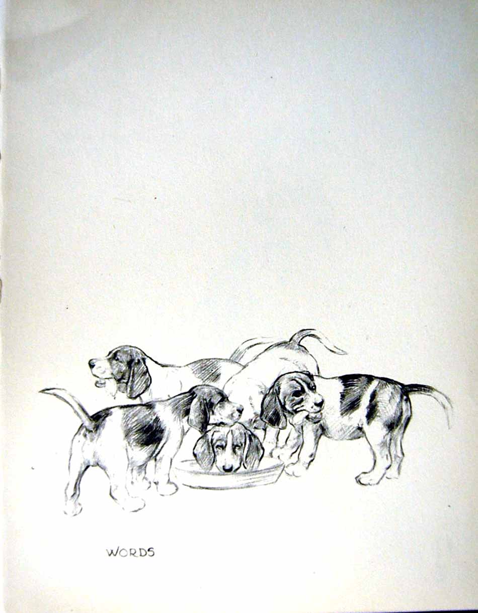 [Print C1933 Dogs Sketch Barker Beagle Puppies Singing Pets 123Re345 Old Original]