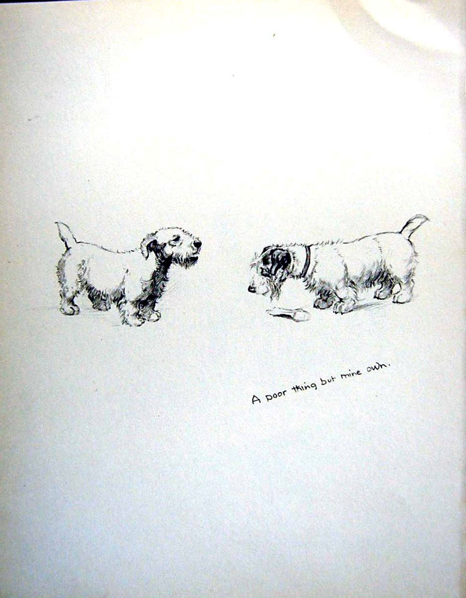 [Print C1933 Dogs Sketch Barker Terrier Show Animals Pets 130Re345 Old Original]
