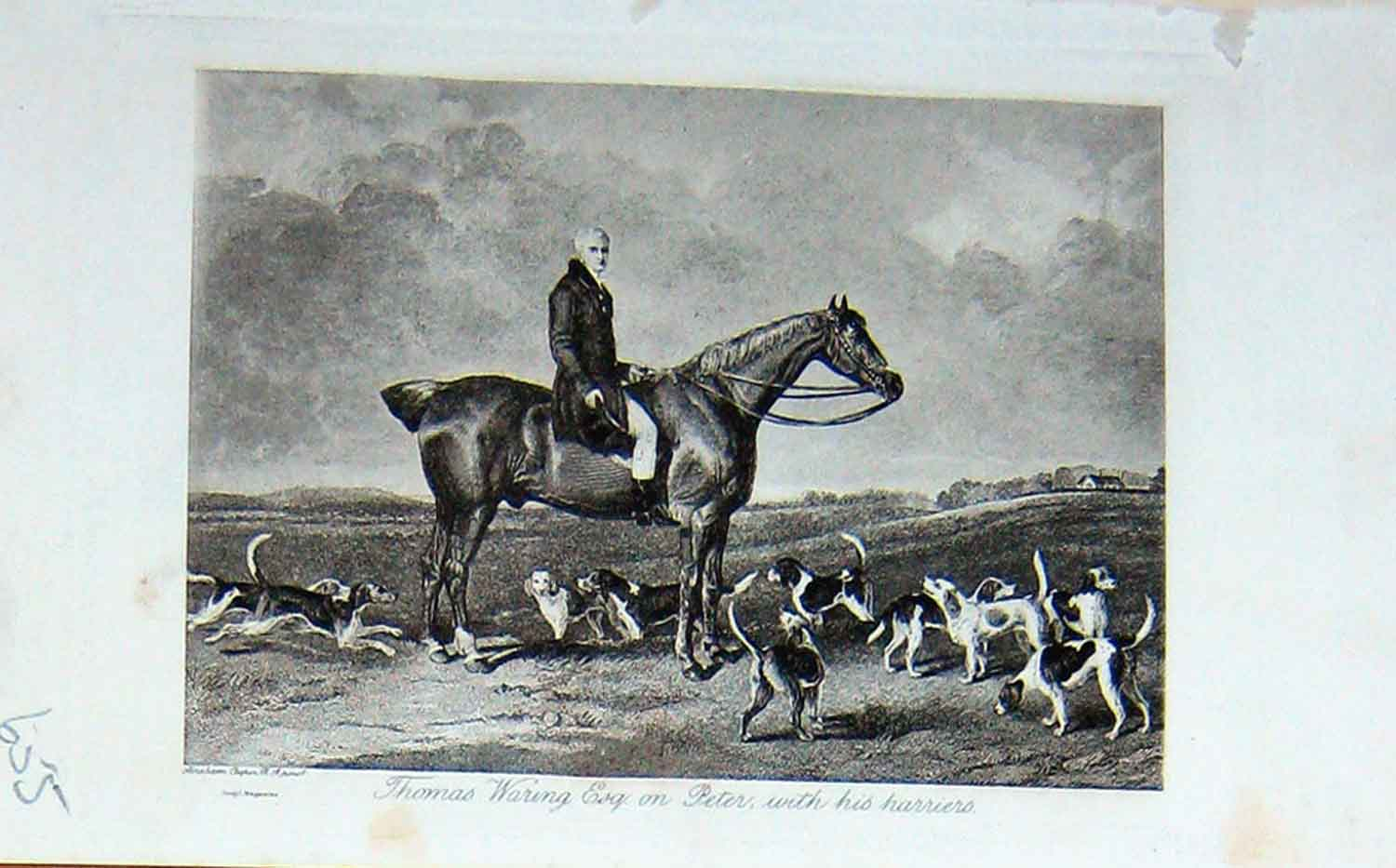 [Print Thomas Waring Horse Peter Harriers Hunting Dogs 1895 655F110 Old Original]