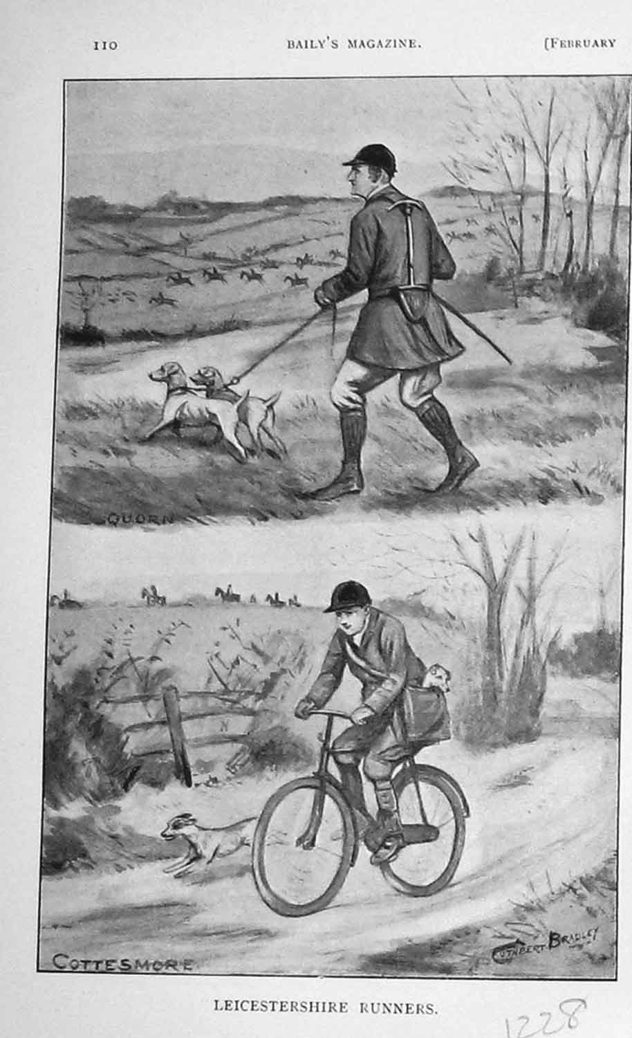[Print 1906 Hunting Leicestershire Dogs Hounds 1228F119 Old Original]