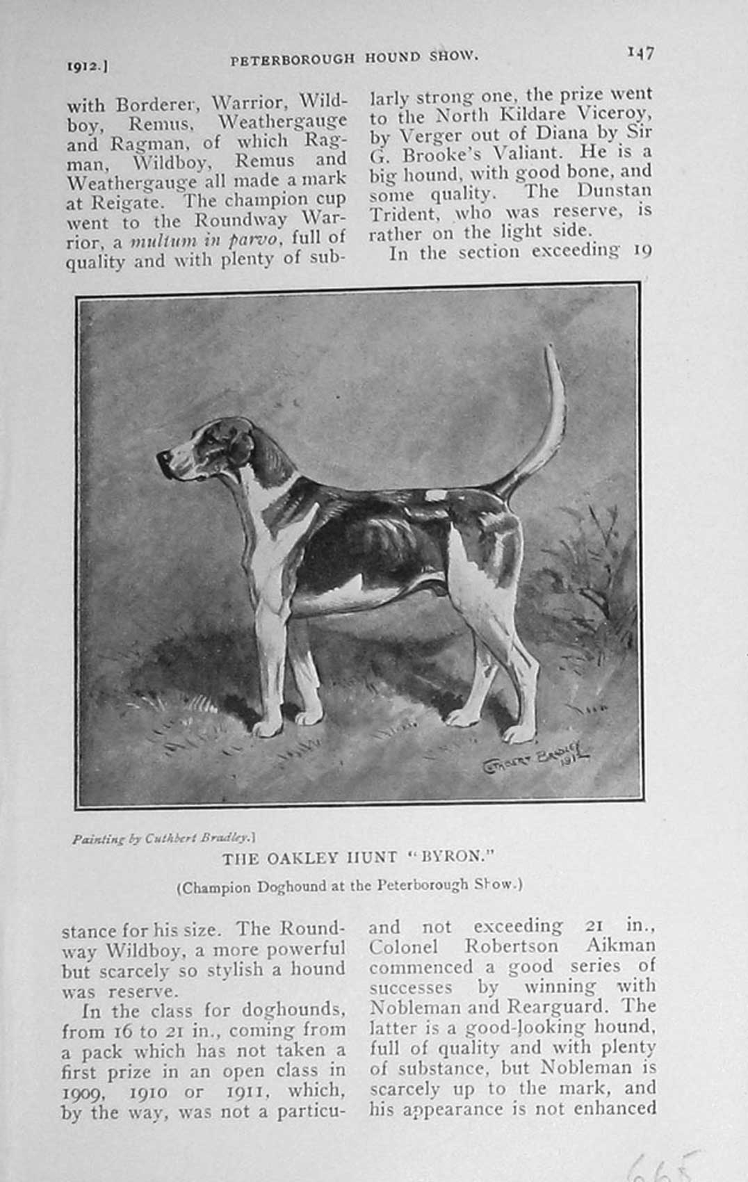 [Print 1912 Oakley Hunt Byron Hound Dog Peterborough Show 665F124 Old Original]