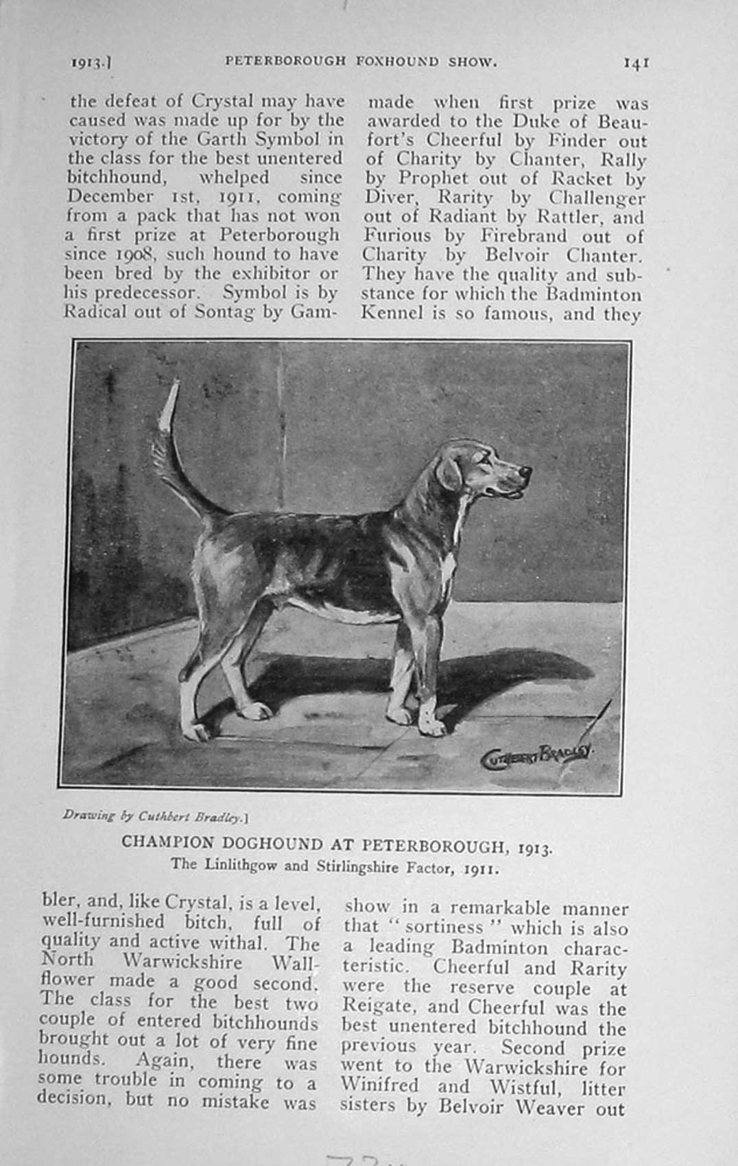 [Print 1913 Champion Hound Dog Peterborough Linlithgow 734F124 Old Original]