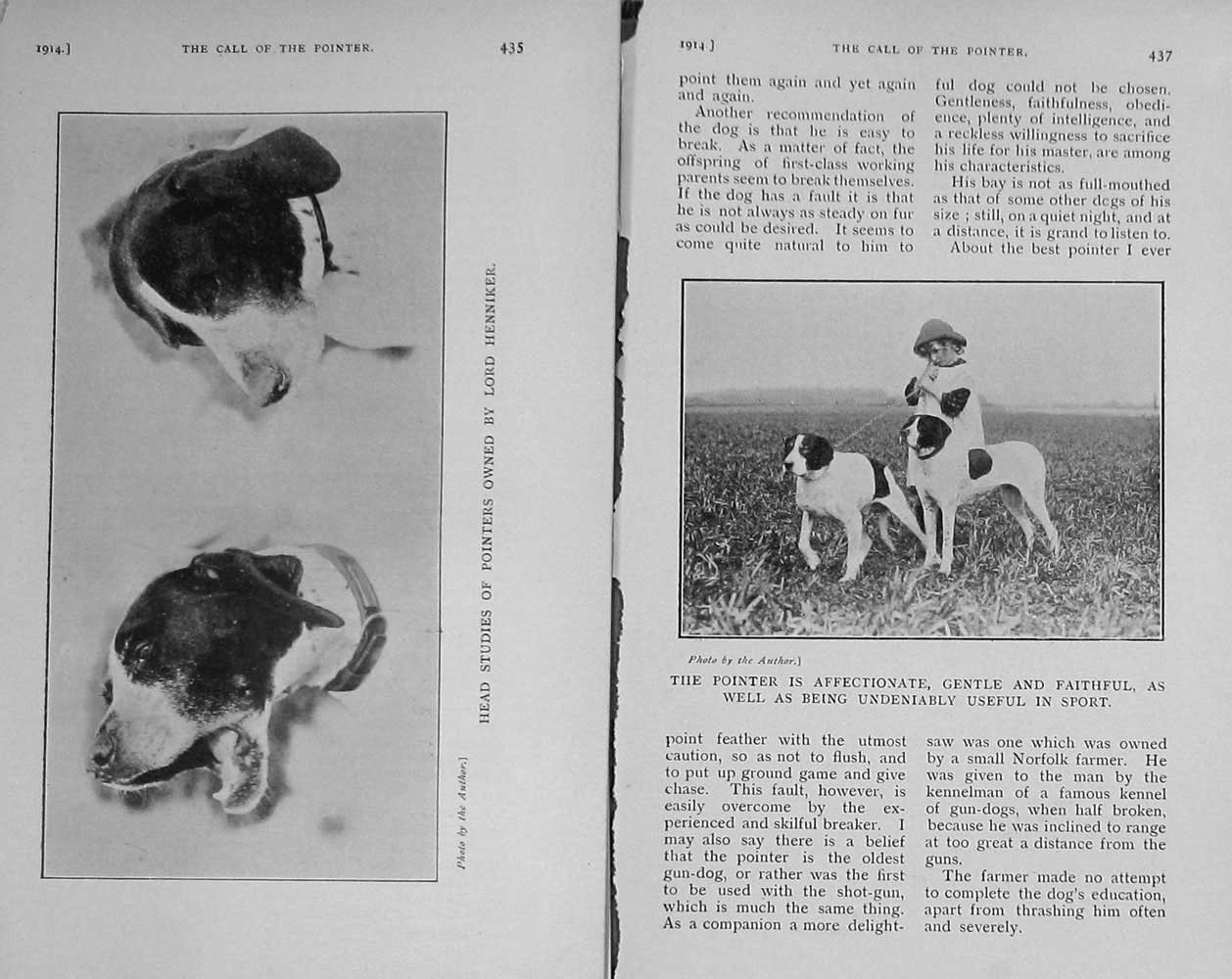 [Print 1914 Pointer Dog Hunting Lord Henniker Sport Photograph 845F125 Old Original]