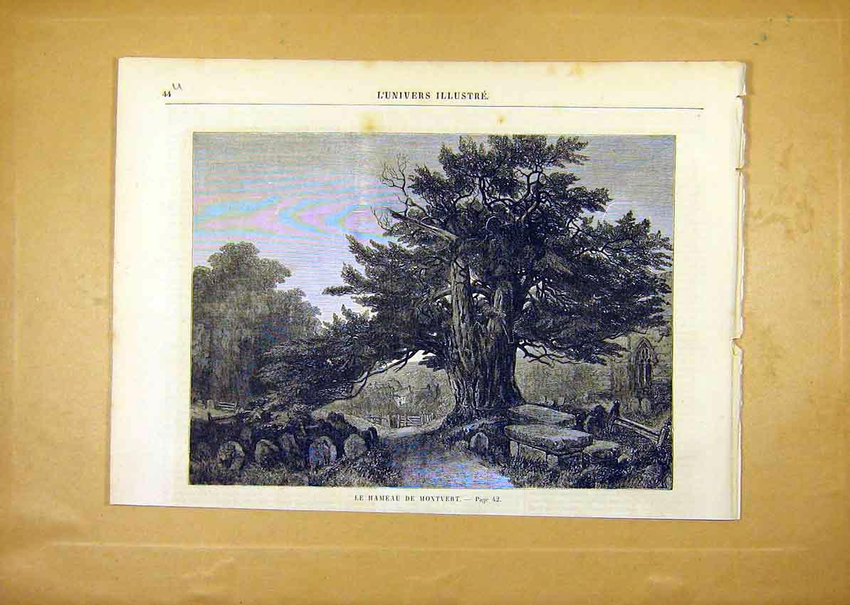 Print Tree Hamlet Montvert Hameau French 1859 44Ulun0 Old Original