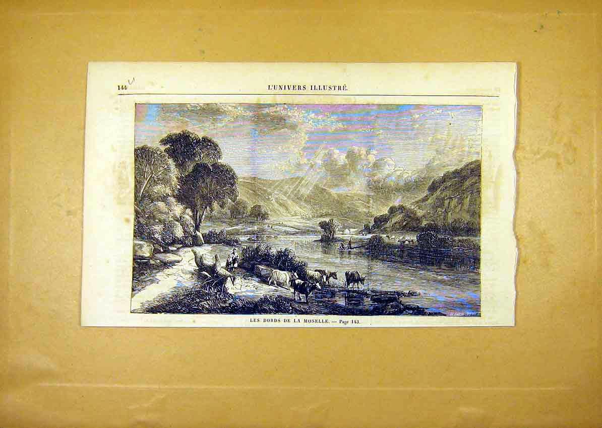 Print Moselle River Cattle Fine Art French 1859 44Ulun0 Old Original