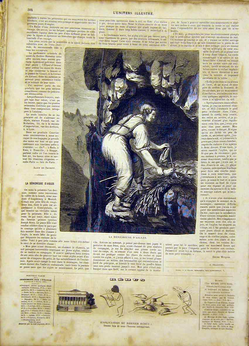 Print Eagle Nest French 1865 Bird Animal 04Lun0 Old Original
