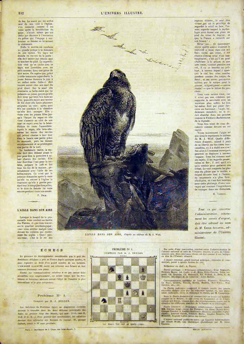 Print Eagle Wolf Bird Prey Animal French 1866 52Lun0 Old Original