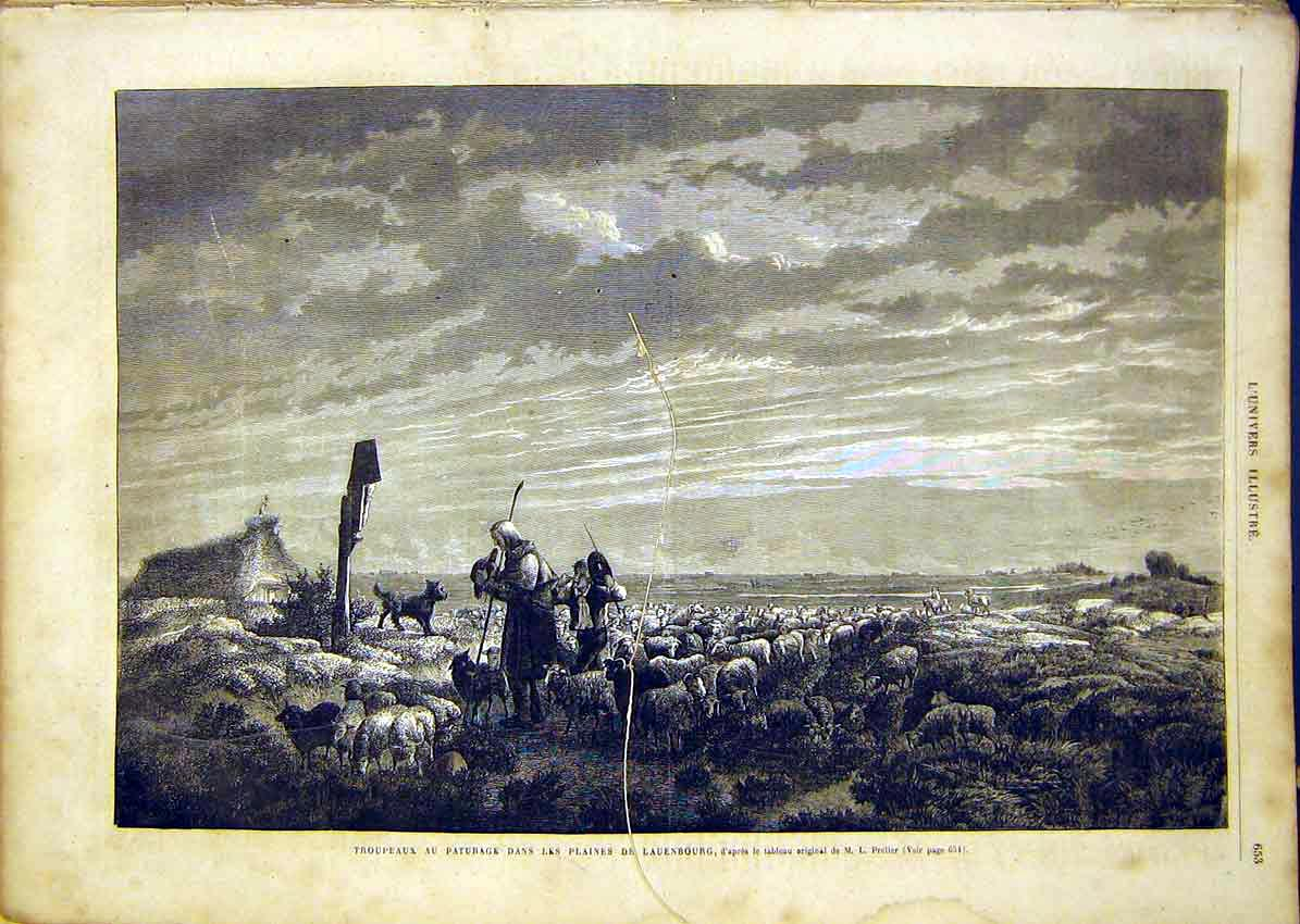 Print Shepherd Sheep Farmer Lauenbourg French 18650 53Lun1 Old Original