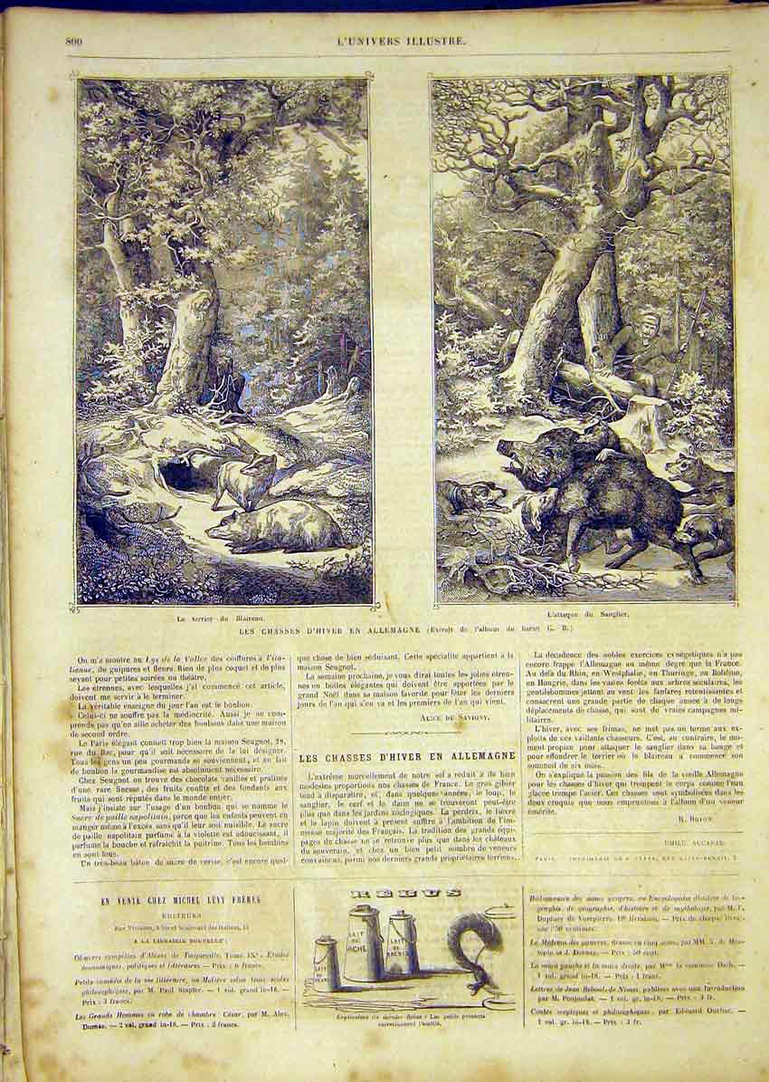 Print Pigs Boars Hunt Hunting Germany French 1865 00Lun1 Old Original