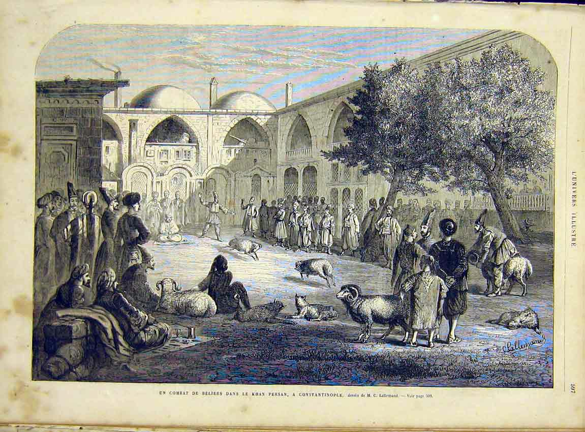 Print Constantinople Sheep Fight Persan French 1866 97Lun1 Old Original