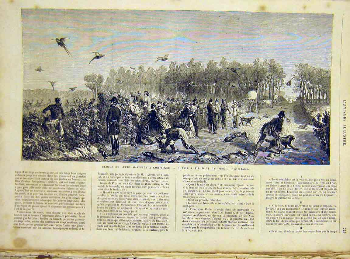 Print Birds Pheasants Shooting Rabbits French 1866 73Lun1 Old Original