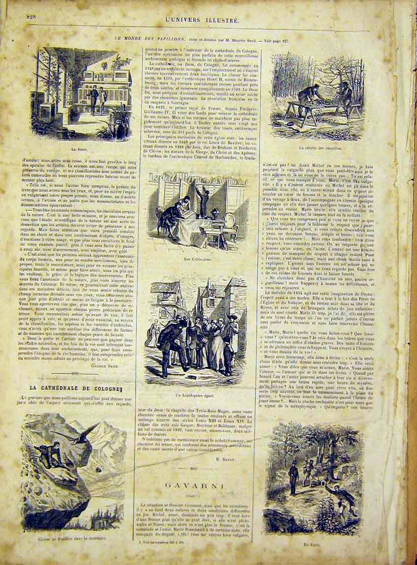 Print Papillon Mountain Forest Gavarni French 1866 28Lun1 Old Original