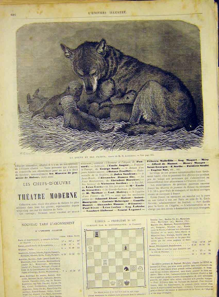 Print Fox Cubs Animal Mammal Leutemann French 1868 16Lun1 Old Original