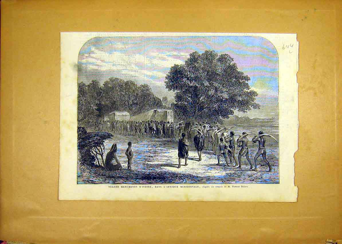 Print Ivory Africa Tusks Merionale French 1868 Baines 44Llun1 Old Original