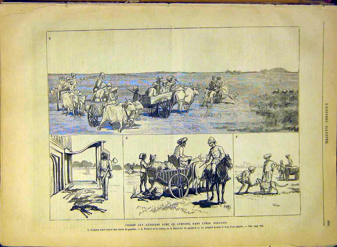 Print Hunting Gazelles Guepard India Ox-Cart 1880 05Lun1 Old Original