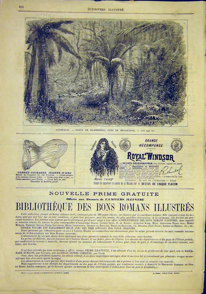 Print Australia Forest Melbourne Dandenong French 1881 52Lun1 Old Original