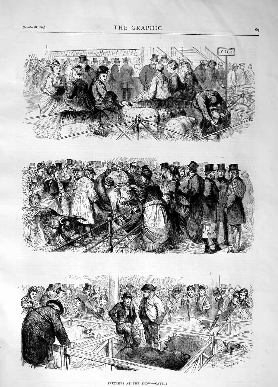 [Print 1869 Sketches Cattle Chow Animals Sheep Pigs 069M101 Old Original]