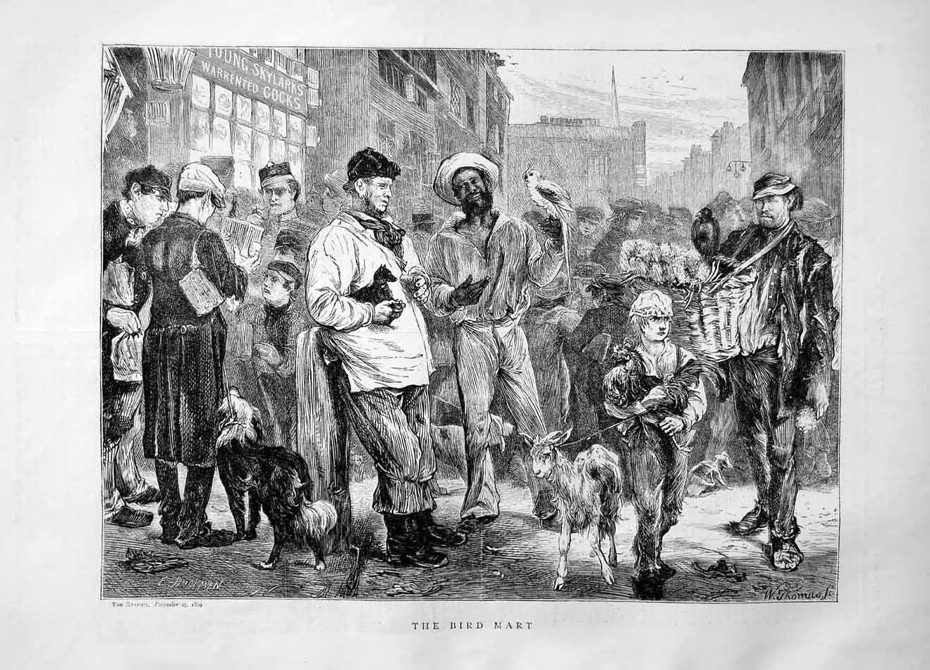 [Print 1869 Bird Mart Street Selling Goat Dog  Old Original]