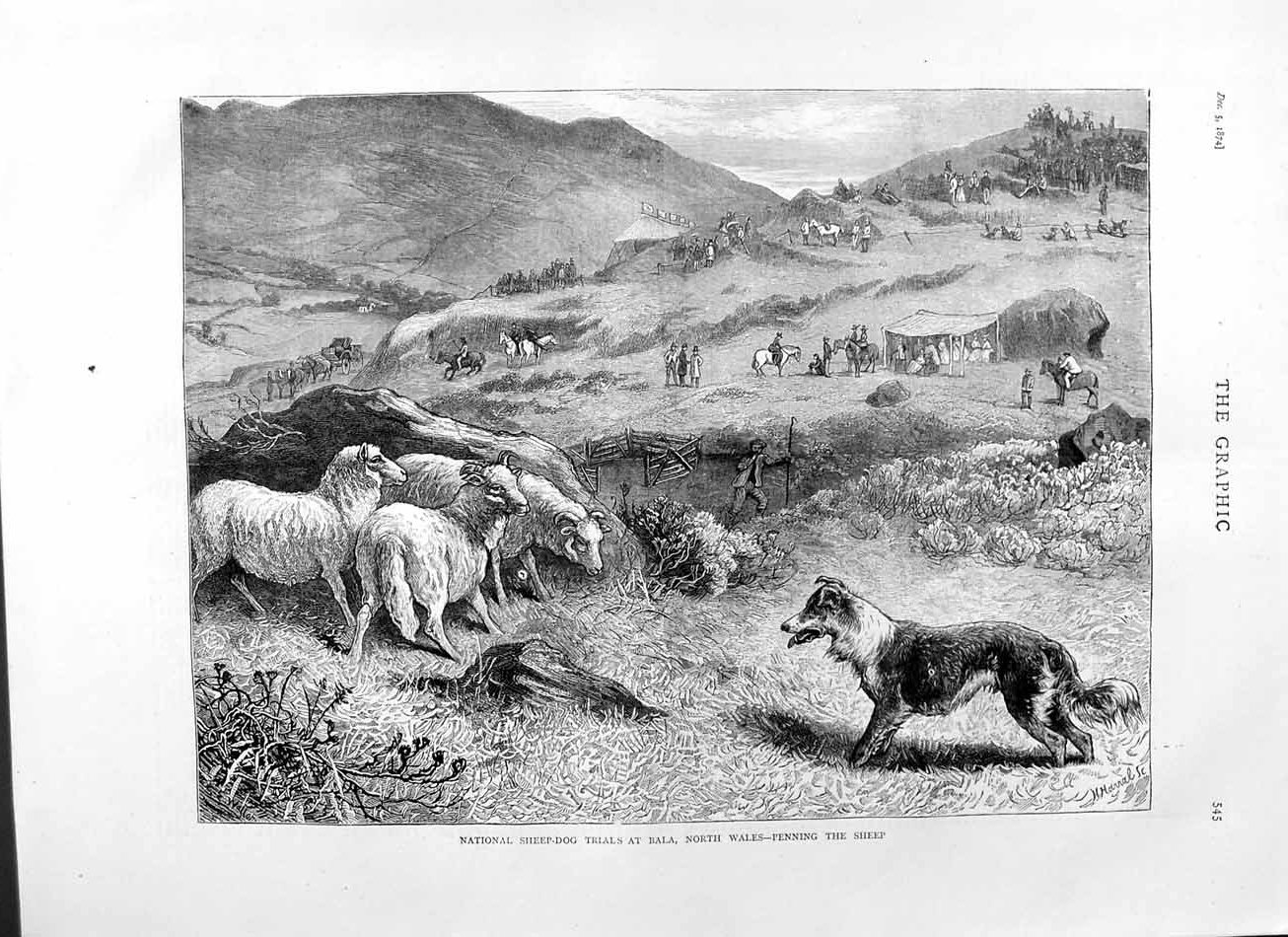 [Print 1874 National Sheep Dog Trials Bala North Wales Country  Old Original]