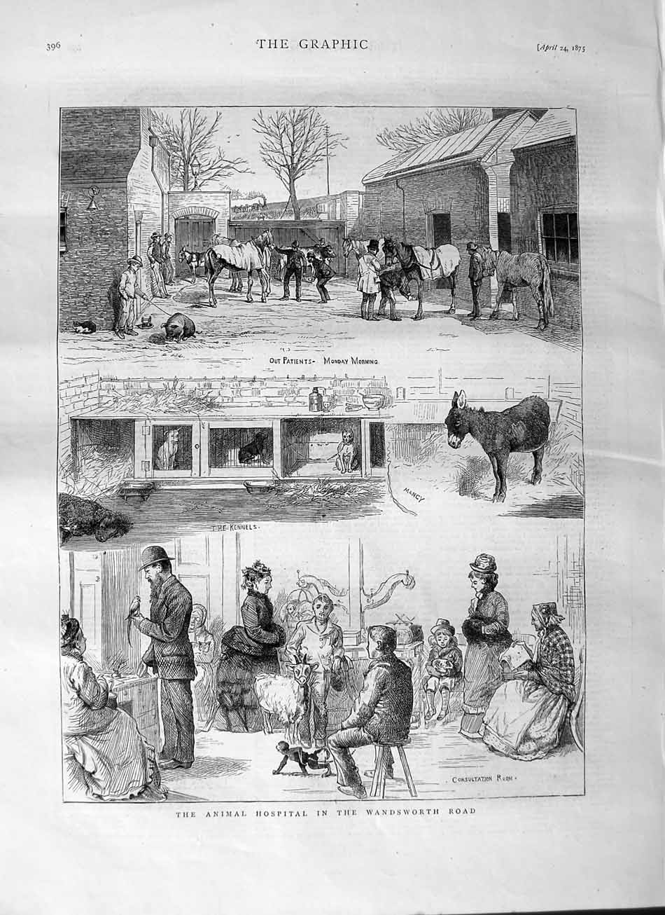 [Print 1875 Animal Hospital Wandsworth Road Kennels Donkey 396M111 Old Original]