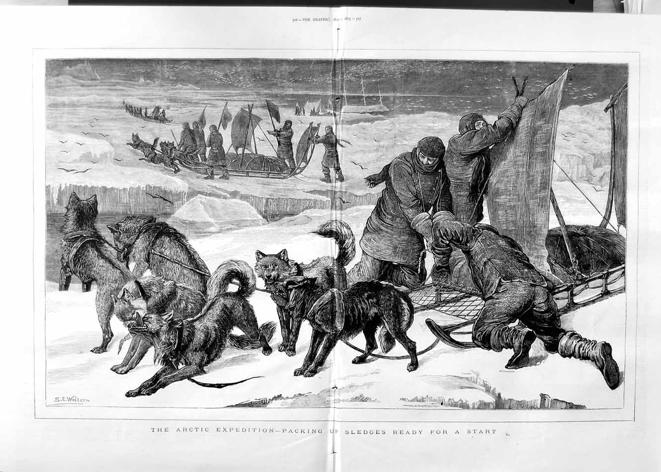 [Print 1875 Arctic Expedition Dogs Sledges Snow 515Tm111 Old Original]