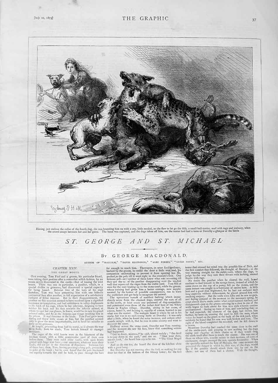 [Print 1875 George Michael Bull Terrier Dogs Leopard  Old Original]