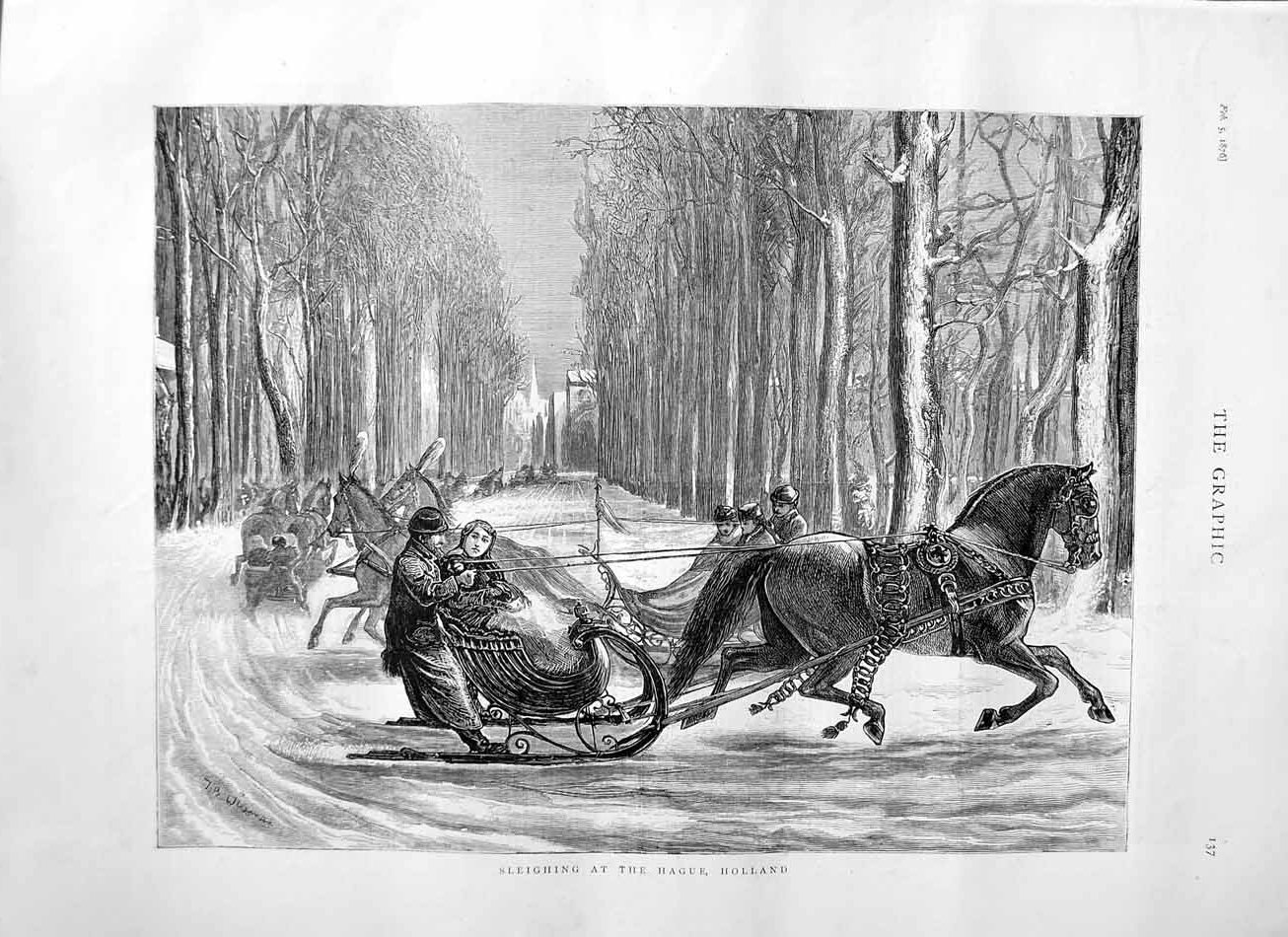 [Print 1876 Sleighing Hague Holland Horse Sledge Trees 137M113 Old Original]