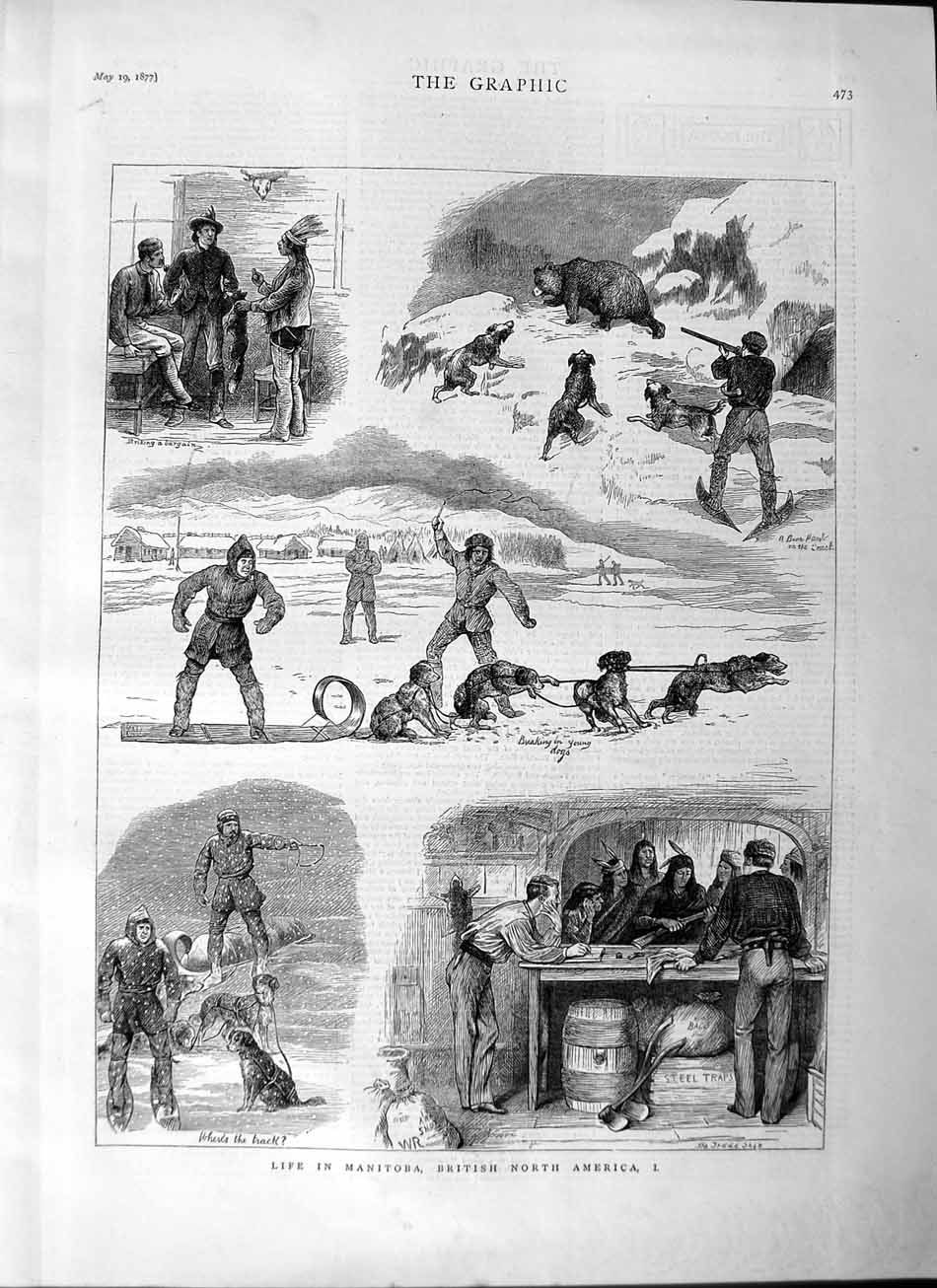 [Print 1877 Life Manitoba British North America Sledge Hunting 473M115 Old Original]