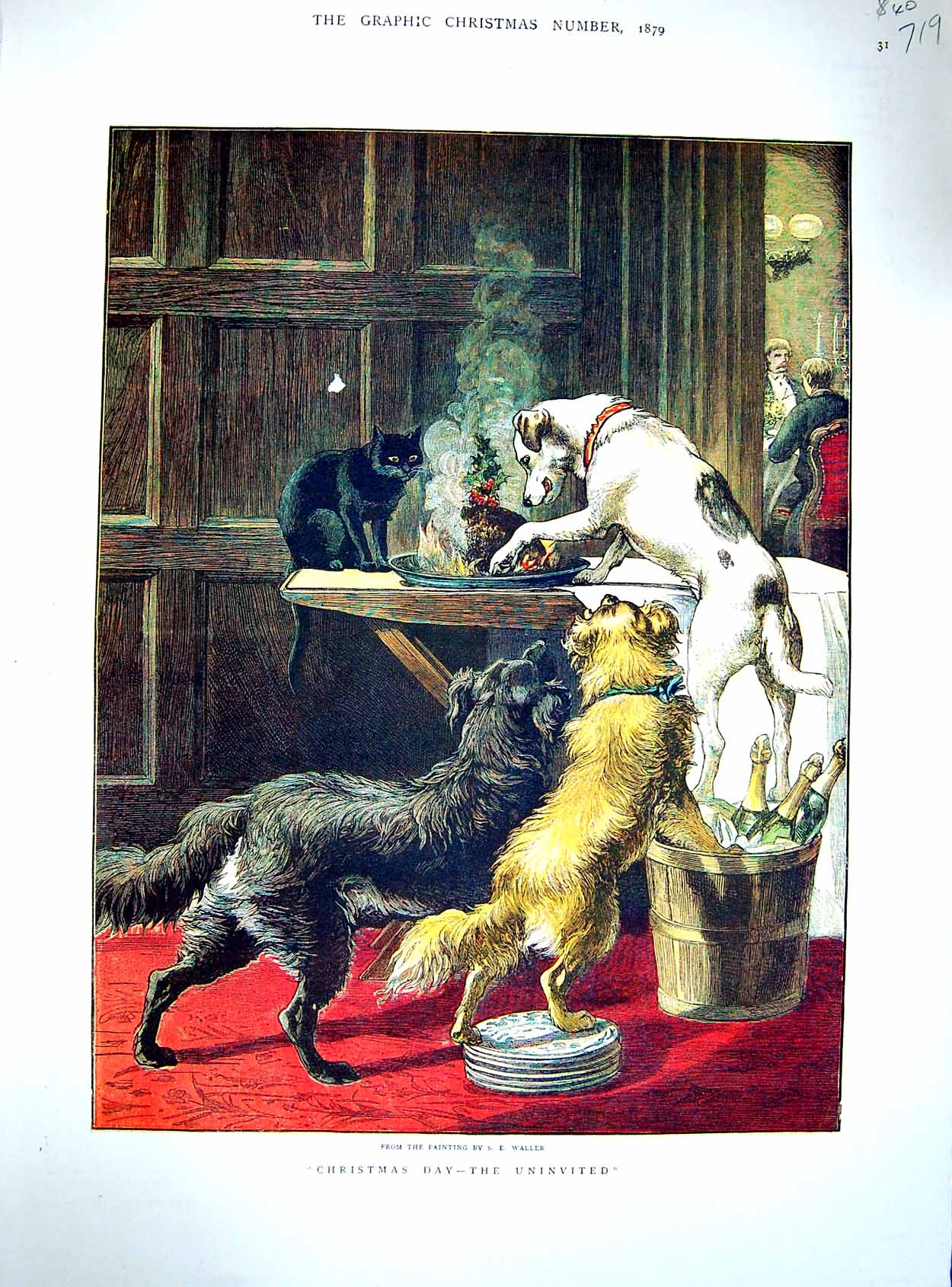 [Print 1879 Waller Colour Dogs Christmas Pudding Table 719M120 Old Original]