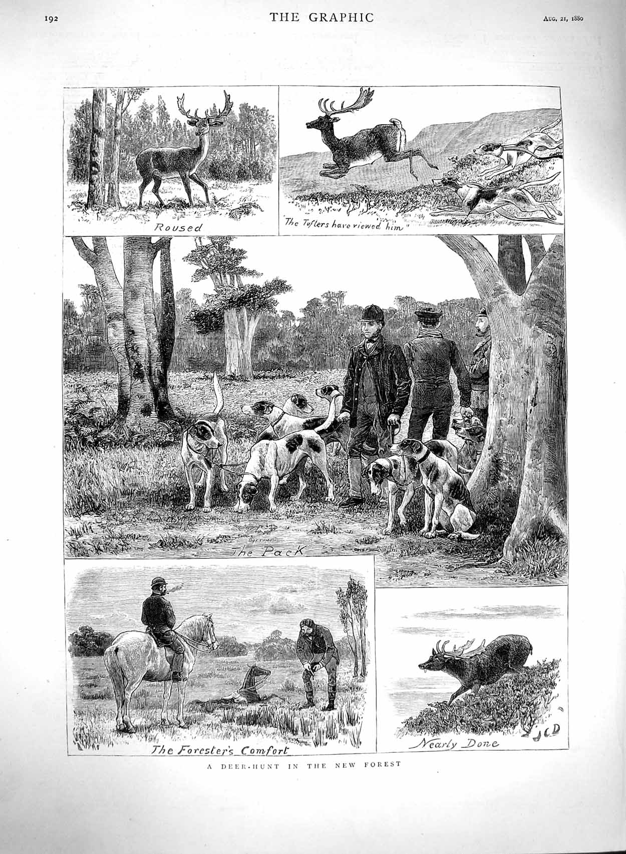 [Print 1880 Deer Hunting New Forest Horses Hounds Dogs 192M122 Old Original]