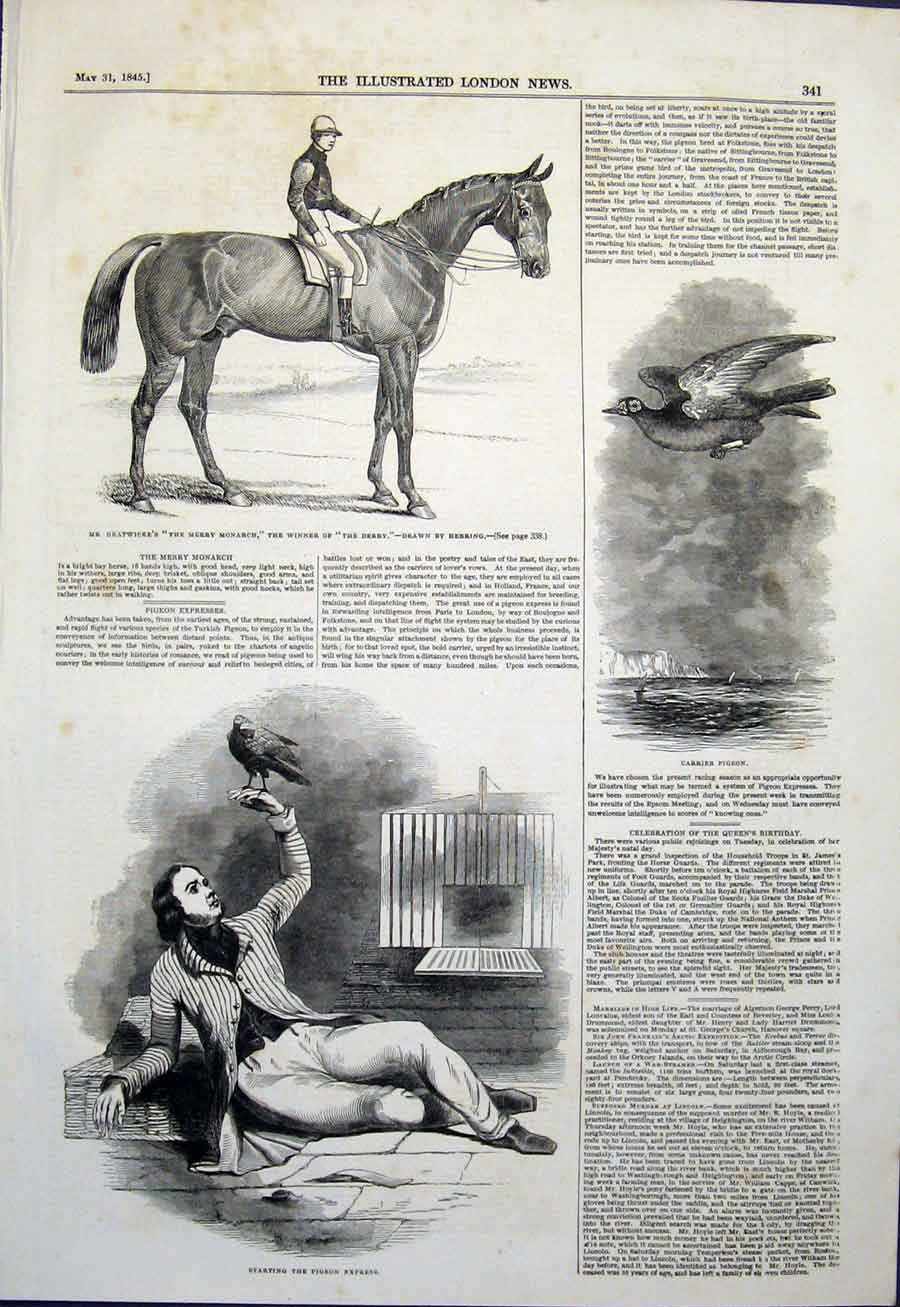 Print Gratwicke Derby Horse Herring Pigeon Express Carrier 41Maa0 Old Original