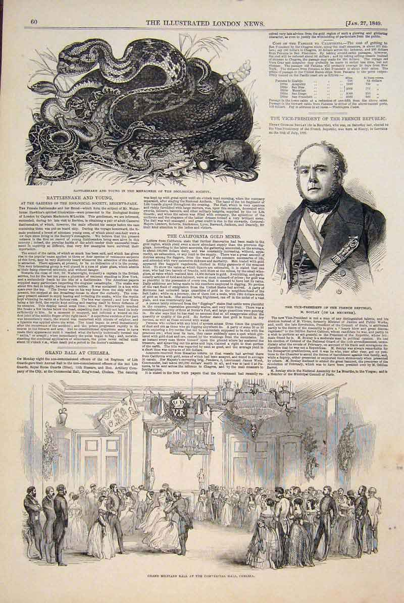 Print Boulay French Snake Rattle Zoo Military Ball Chelsea 60Maa0 Old Original