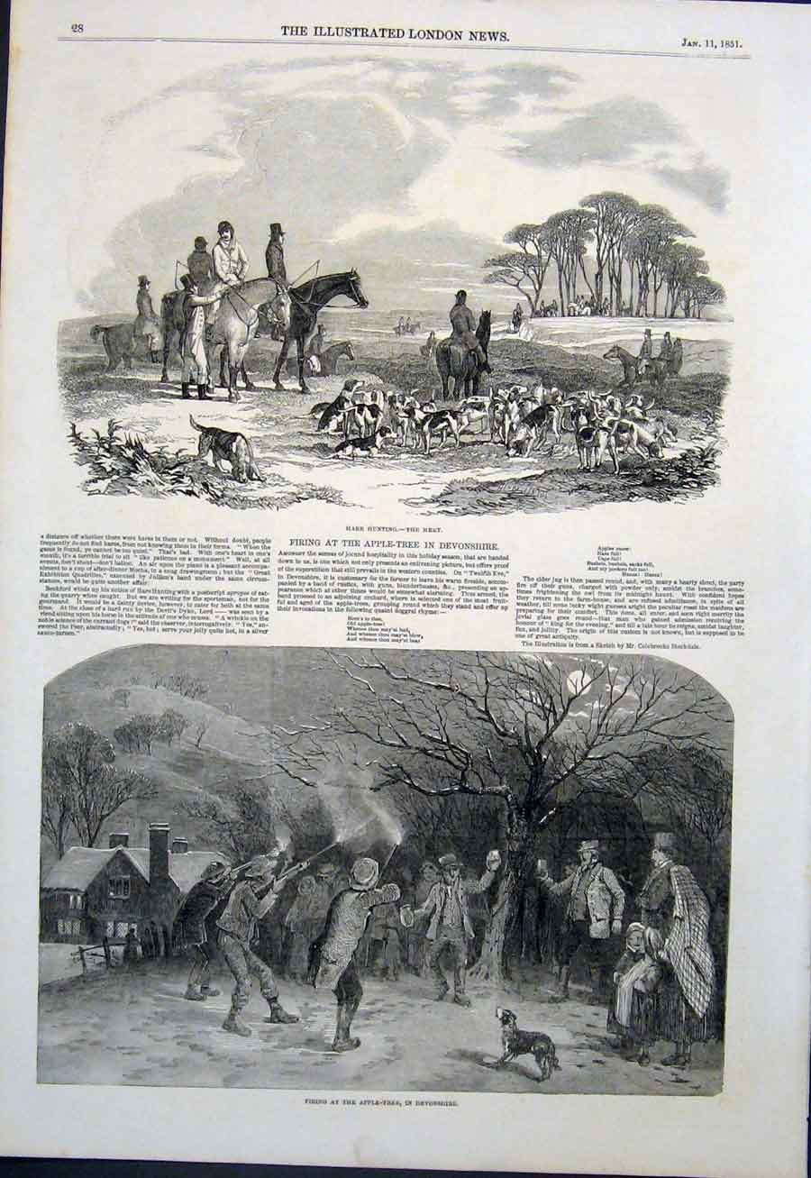 Print Hare Hunting Hunt Hounds Apple Tree Devonshire 1851 28Maa0 Old Original
