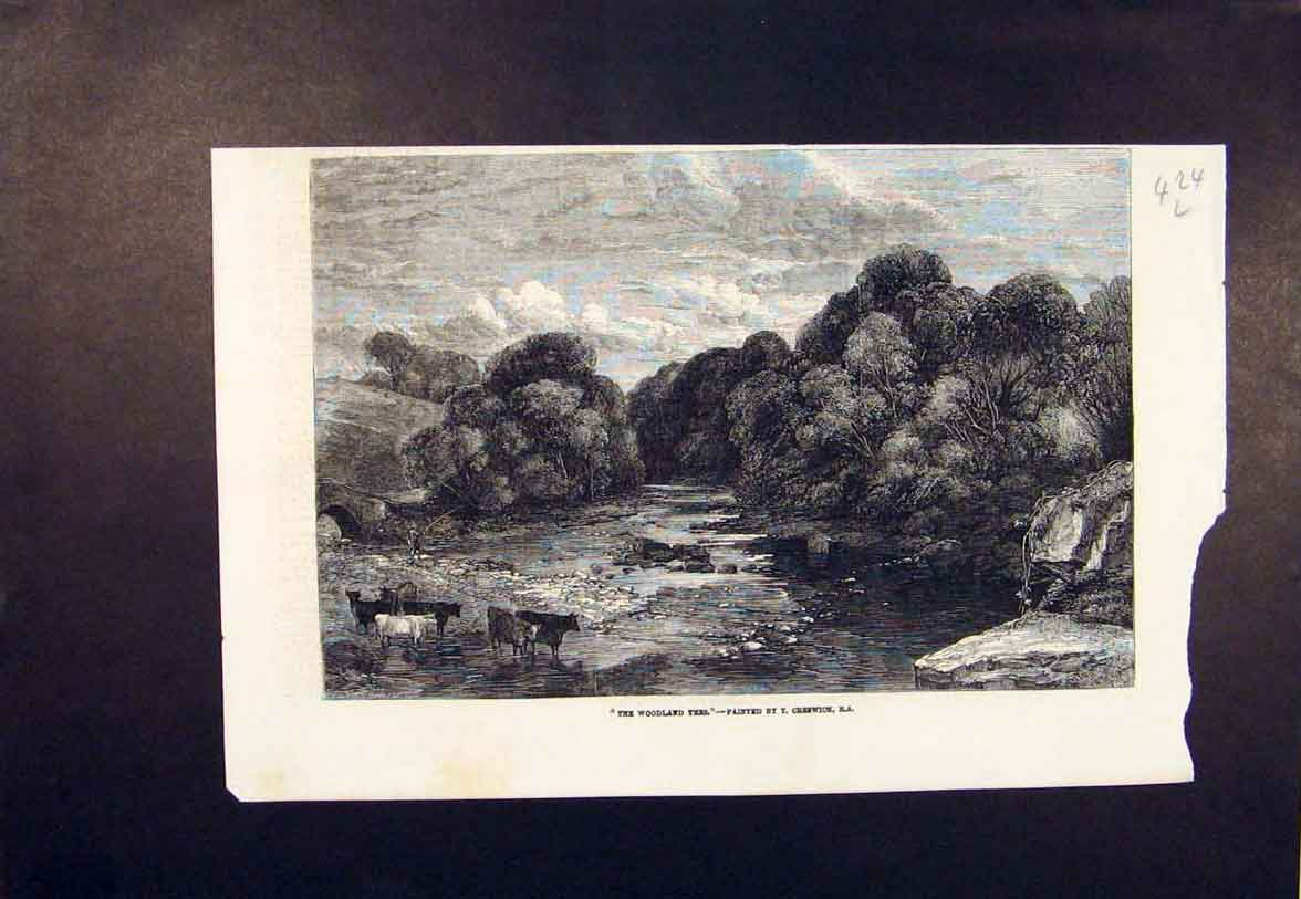 Print Woodland Trees Creswick Cows River Cattle 1854 24Lmaa0 Old Original