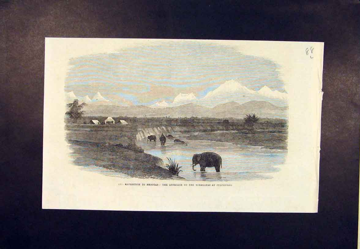 Print Expedition Bhootan Himalayas Julpigoree 1865 88Lmaa0 Old Original