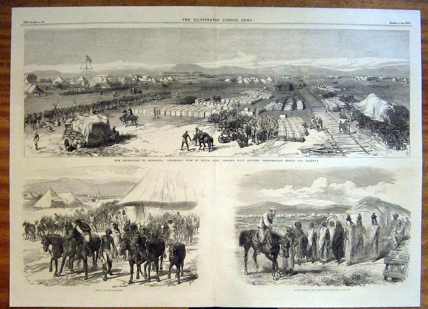 Print Abyssinia Zulla Mules Mule Expedition Camp 1868 51Tmaa0 Old Original