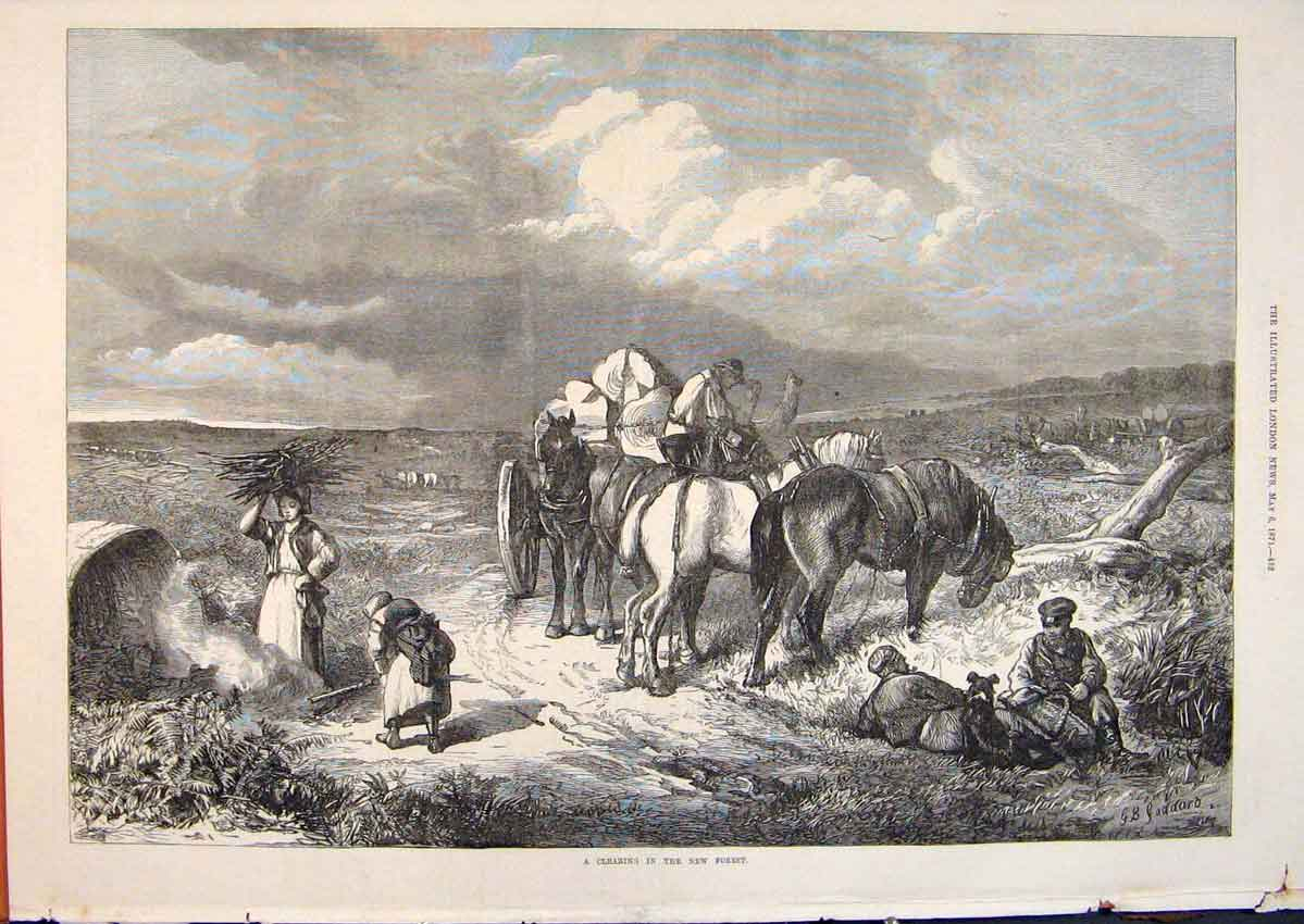 Print New Forest Ponies Clearing Camp 1871 52Maa0 Old Original